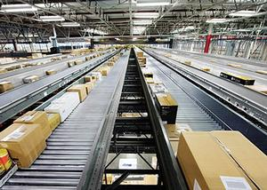 Case, tote and polybag  conveyor systems Image